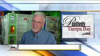 Positively Tampa Bay Game Changers: Bill Gray - Video