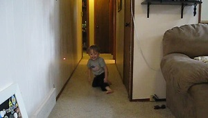 Baby and cat chase laser pointer - Video
