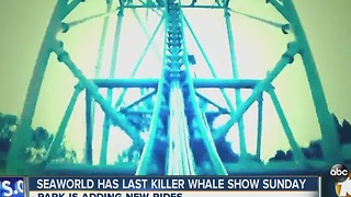 Seaworld has last killer whale show Sunday - Video