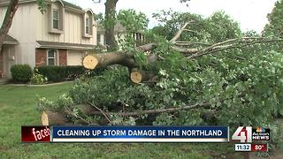 Storm damage in Park Plaza neighborhood following straight line winds and storms - Video