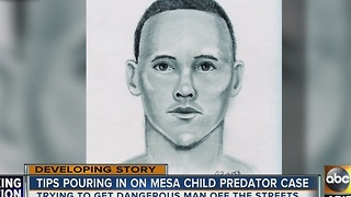 Police looking for Mesa child predator - Video