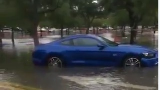 South Florida Flooding Leaves Cars Stranded in Parking Lots - Video