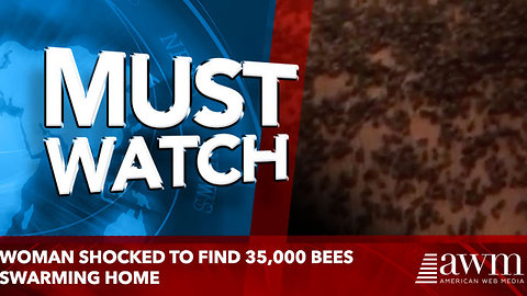 Woman shocked to find 35,000 bees swarming home