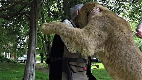War hero gets a heart warming hug from a lion