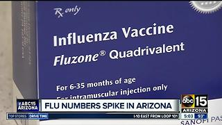 Health agency: Flu lingering in Arizona longer than usual - Video