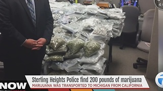 Sterling Heights pot bust - Video