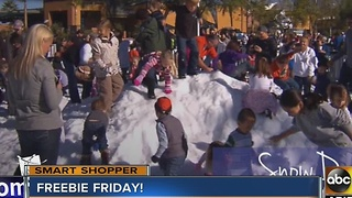 Smart Shopper: Desert Ridge Marketplace bringing in snow - Video
