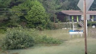 Kayaker Seen in Floodwater Along River Road in Guerneville - Video