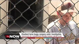 APL investigating Cleveland horse buggy company - Video