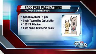 PACC hosting free vaccine, microchip clinic on July 15 - Video