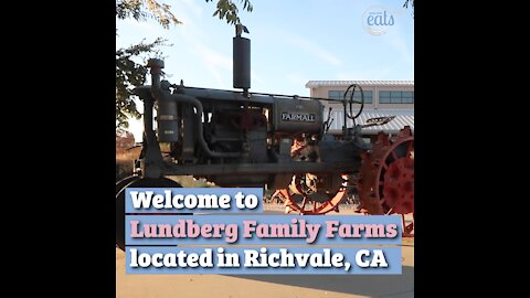How Rice is Produced, Featuring Lundberg Family Farms