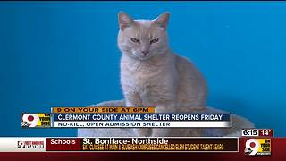 Clermont County Animal Shelter reopens Friday - Video