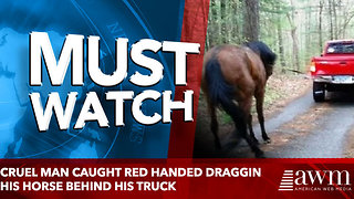 cruel man caught red handed draggin his horse behind his truck - Video