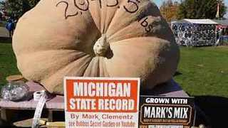 Man Shows Off His 2,403.5-Pound Pumpkin