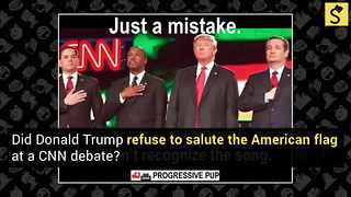 Donald Trump Doesn't Salute the Flag? - Video