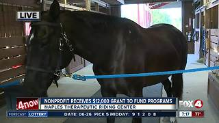 Naples Therapeutic Riding Center receives grants to fund programs for women and children in need - 7am live report - Video