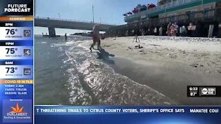 "Madeira Beach businesses hold ""Save John's Pass"" rally, bringing attention to sand blocking issue"
