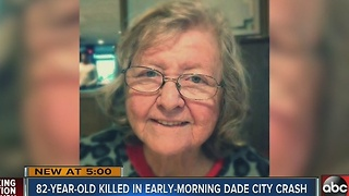 82-year-old woman fatally struck by vehicle on US 301 in Dade City - Video