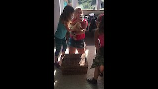 Kids totally shocked with new puppy surprise