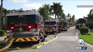 2 dogs rescued from fire near Boca Raton
