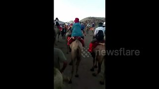 Tourists stranded in 'camel jam' in Chinese mountain - Video