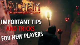 Important Tips And Tricks - Valheim