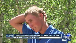 Bear attacks camp staffer at Glacier View Ranch Christian retreat northwest of Boulder - Video