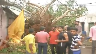 Dozens Dead After Powerful Rain And Dust Storms Thrash India - Video