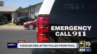 Toddler dies after being pulled from Mesa pool Saturday