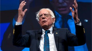 How Much Money Does Bernie Sanders Campaign Have?