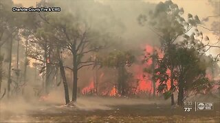 Brush fire in Southwest Florida prompts evacuations