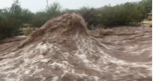 Arizona's Monsoon Season Causes Severe Flooding in Apache Junction - Video