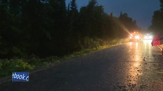 Trees and power lines down in Shawano County
