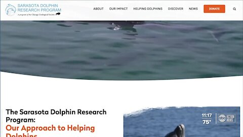 Sarasota Dolphin Research Program monitors environmental impacts of Piney Point