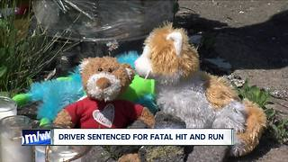 Man sentenced for deadly hit-and-run - Video