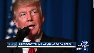 President Trump weighing DACA repeal - Video