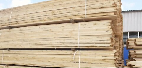 Wood pulp shortage cause price increase for everything from toilet paper to new home building