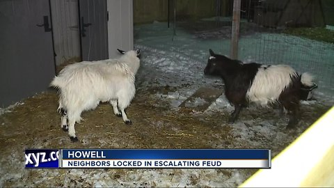 Chickens, goats, and bright lights leave neighbors fuming and feuding
