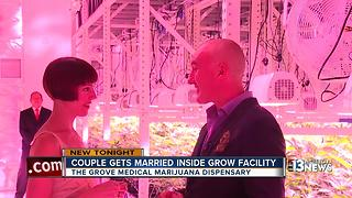 'Weed wedding' held on the first day of legalized marijuana in Nevada - Video