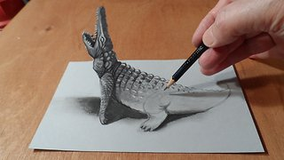 How to Draw Crocodile - Drawing 3D Crocodile - 3D Trick Art