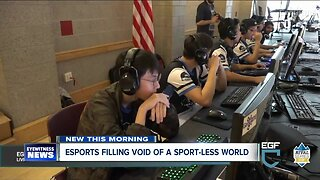Esports hoping to fill a void in a sports limited world