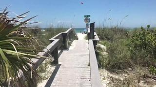 Secret parking locations for Clearwater, St. Pete and Pass-a-Grille beaches | Digital Short - Video