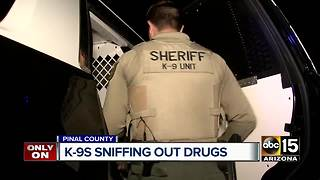 Pinal County K-9s sniffing out crime - Video