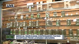 Is Michigan facing a marijuana shortage?