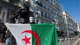 Algeria Protests See 183 Injured