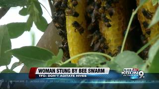 Woman stung by bees nearly 40 times - Video