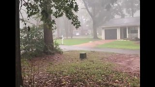 Hurricane Downpours Extend to Tallahassee - Video
