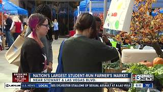 200+ students participate in farmer's market at Zappos - Video