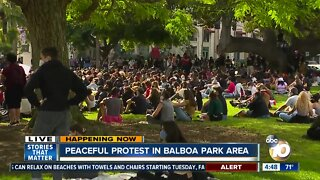 Peaceful protest in Balboa Park are