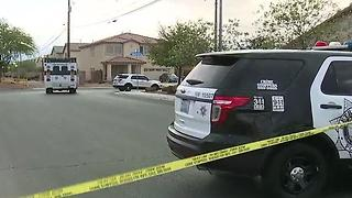 Suspect shot by officers expected to survive - Video
